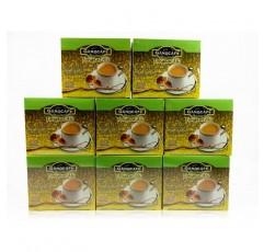 가노 엑셀 8 박스 인삼 통캇 알리 커피